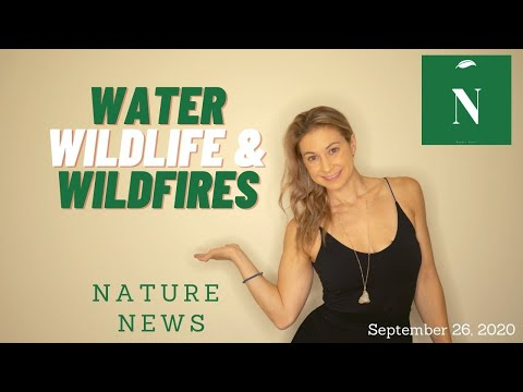 Nature News- September 26, 2020 - Water, Wildfires & Nature Rights