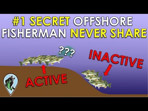 Fish Finder Secret Pros Don't Want You To Know! | Bass Fishing Sonar