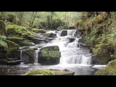 Na Fianna - Earth Song