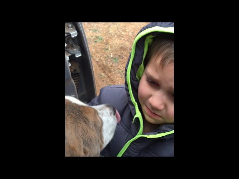 Little Boy Reunited with His Dog