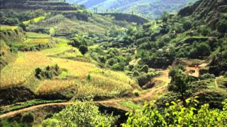 Baixar Hope in a Changing Climate - by John D. Liu (2009)