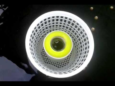 Diy floating surface skimmer youtube for Homemade skimmer filter