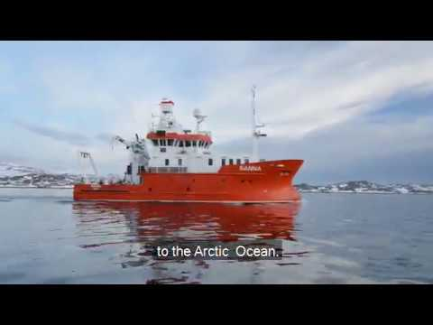Shark Diary: Embark on an Arctic research expedition!