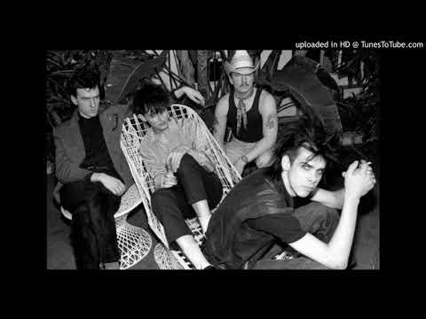 The Birthday Party - Wild World