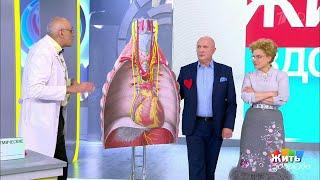 постер к видео Жить здорово! Тахикардия. Почему колотится сердце?
