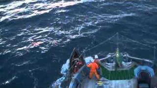 Bob Barker activists throw butyric acid toward the Yushin Maru # 3