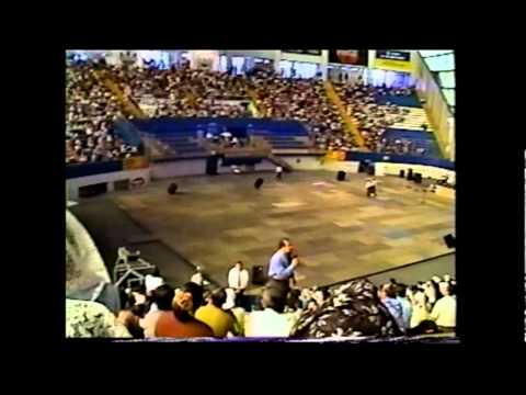 Pastor Rafael Rodriguez Nos estan Derribando el Fundamento