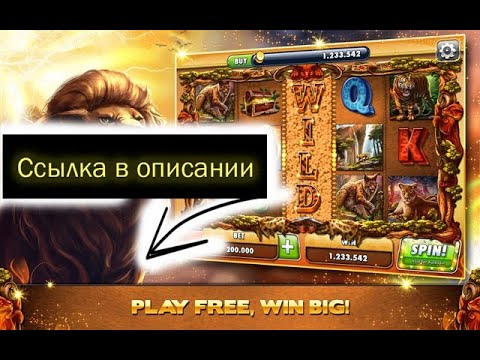 Treasures of tombs описание игрового автомата