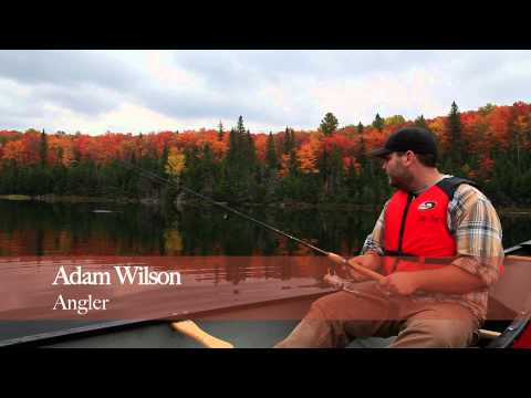 The Natural Brook Trout Lakes Of Algonquin Park (www.algonquinpark.on.ca)