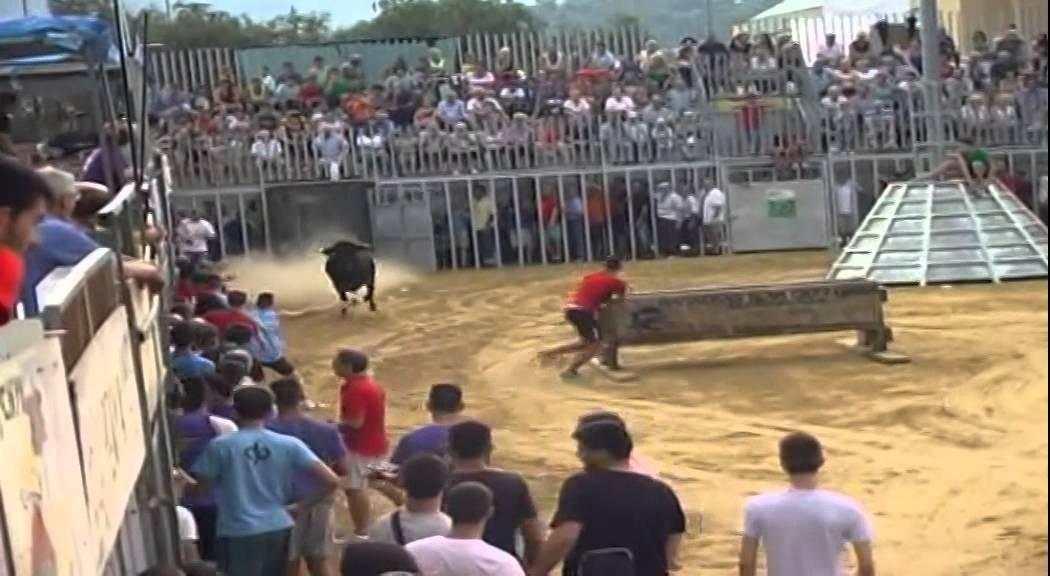 Encierro y prueba de vacas Fiestas Sagunto 2015