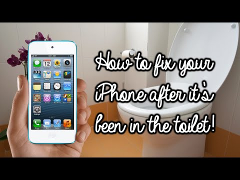 premium selection c946d 3f581 How to fix your iPhone after you drop it in the toilet! | Rachybop ...