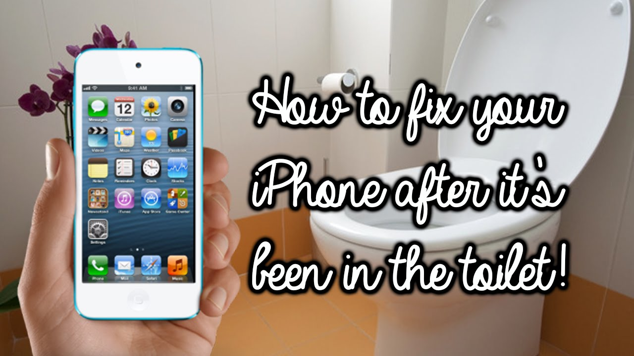 How to fix your iPhone after you drop it in the toilet! | Rachybop