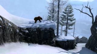 Grizzly Bear: Cabela