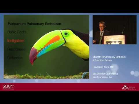 Obstetric Pulmonary Embolus: A Practical Primer - Lawrence Tsen, MD