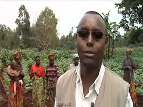 TodaysNetworkNews: Stabiliser le Burundi rural UN FAO