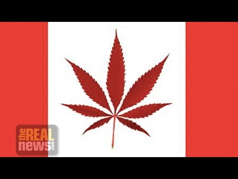 Challenges Ahead for the Legalization of Marijuana in Canada
