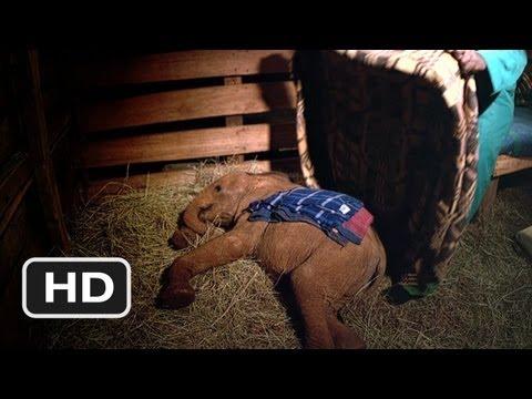 Born to Be Wild #6 Movie CLIP - Elephant Bedtime (2011) HD