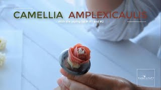 Buttercream Camellia amplexicaulis piping tutorial - Cách bắt hoa hải đường từ kem bơ