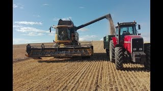 Cosecha cereal 2017/Harvest 2017