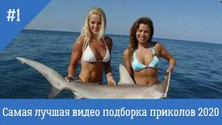 видео подборка приколов 2020 про рыбалку