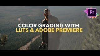 Color Grading With LUTS! Adobe Premiere Pro