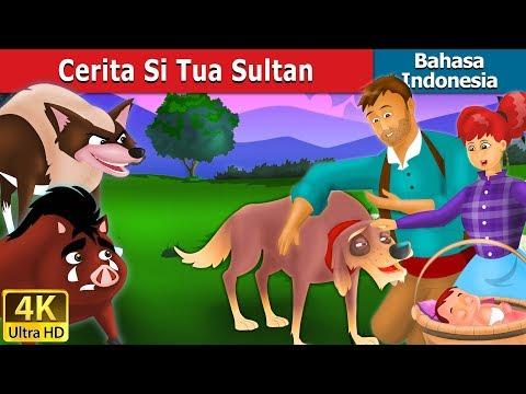 Cerita Si Tua Sultan   Dongeng bahasa Indonesia   Dongeng anak   4K UHD   Indonesian Fairy Tales