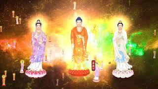 Sư Cô Thích Nữ Tịnh Nhựt & Phật Tử Tụng ???? = Nam Mô Tiếp Dẫn Đạo Sư A Di Đà Phật = Hộ Niệm Vãn