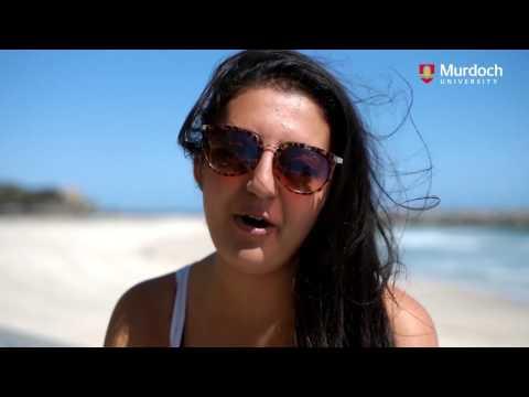 Murdoch University - Study Abroad