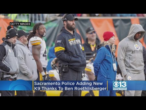 Tony Sandoval on The Breeze - Sacramento Police Dept. is Adding a New K9 – Thanks to this Big NFL Player