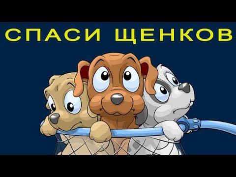 СПАСИ ЩЕНКОВ! Детская Логическая Развивающая игра про Собачек и Кошечек Lets play