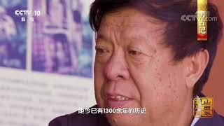 《中国影像方志》 第215集 山西高平篇| CCTV科教