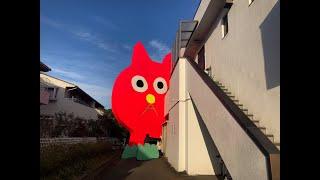 ピンクの猫の小林さん@横浜市金沢区、に会いに行ってきたよ!