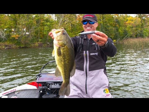 4 Tips to Boost Success With Walking Topwater Baits