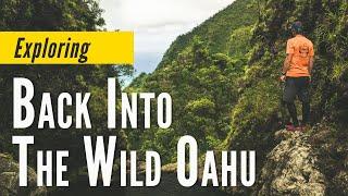 Koolau Mountain Adventure Hike
