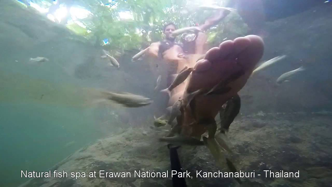 Exellent Stuff Natural Fish Spa At The Erawan National