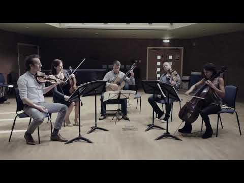 Boccherini  Guitar Quintet No4 in D major 'Fandango'