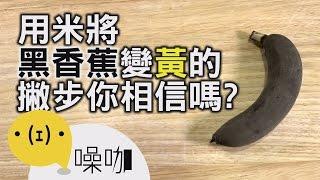網路瘋傳~用米就可以把黑香蕉變黃?【做吧!噪咖】