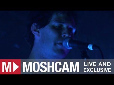 Animal Collective - Fireworks   Live in Sydney   Moshcam