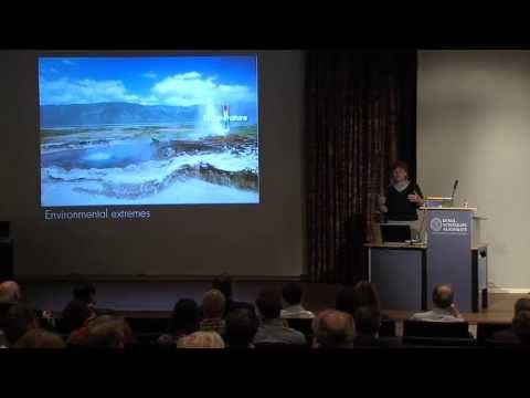 Lynn Rothschild: Life in Extreme Environments and the Search for Life in the Universe