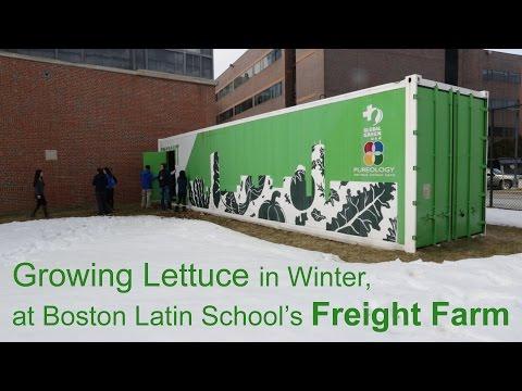 The Freight Farm At Boston Latin School