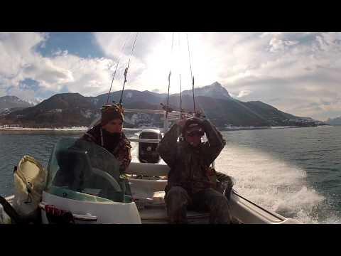 Lucile Lefevre, Une snowboardeuse provençale au JO de Pyeongchangde YouTube · Durée:  2 minutes 3 secondes