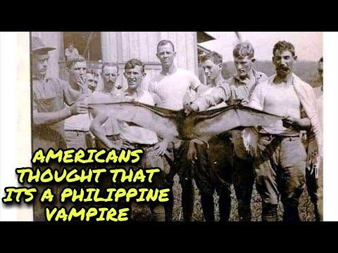 Download 35 RARE FILIPINO PHOTOS YOU MUST SEE BEFORE YOU DIE #Rarefilipino photos#Philippine History#Noon