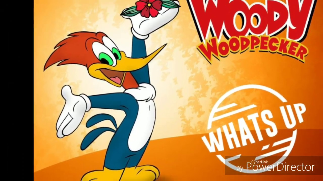 woody woodpecker images - 1280×720