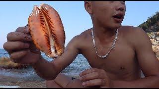 Món Ăn Dân Dã   Đi Biển Bắt Ốc Bướm Và Nướng Tại Bãi Cát - Thái Hoàng Official
