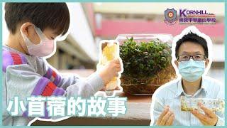 Publication Date: 2021-04-27 | Video Title: 佛教中華康山學校 _《小苜蓿的故事》- 小苜蓿種植過程短片