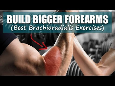 Build Bigger Forearms: Best Brachioradialis Exercises