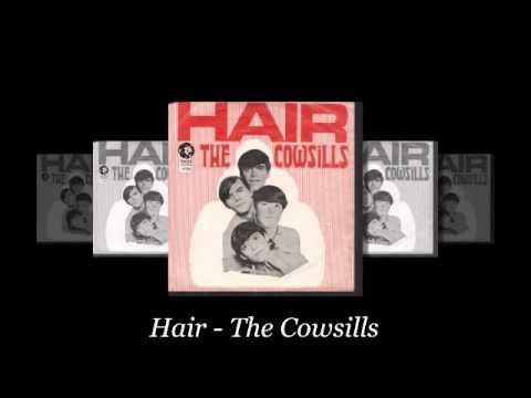 Hair - The Cowsills