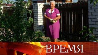 Изменения в пенсионном законодательстве России должны стать поэтапными, считают в правительстве.