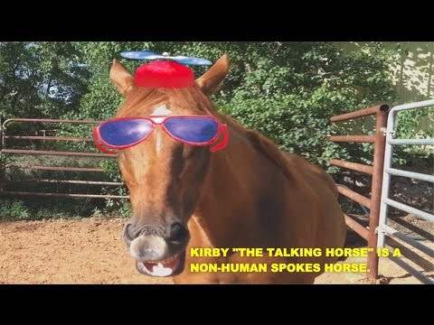 "Kirby  ""THE TALKING HORSE""_   Hamburg NY Playground Project 2"