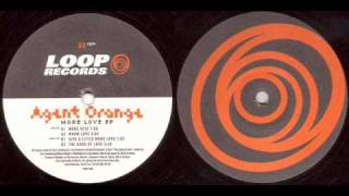 Agent Orange - Warm Love (1995)